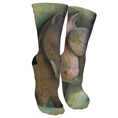 Nifdhkw Unisex Colorful Patterned Socks Compression Socks for Willow Tree Quiet Strength Figurine Crew Socks