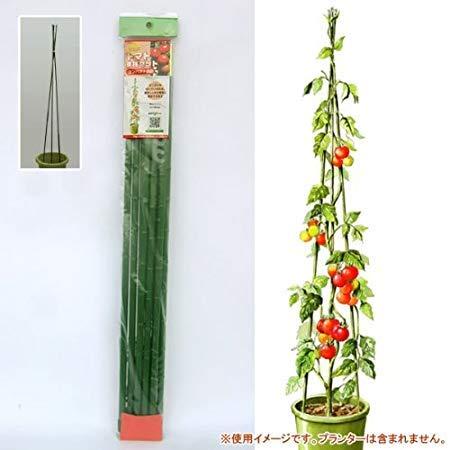 ニチカン『トマト支柱セット(高さ1.8m)』