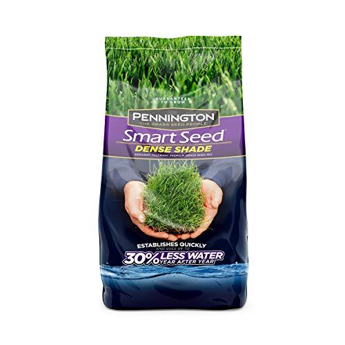 Pennington 100086851 Grass Seed, 3 lb, lb