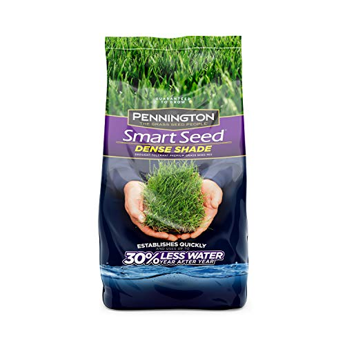 Pennington Smart Seed Dense Shade Grass Seed, 3 lb (100086851)
