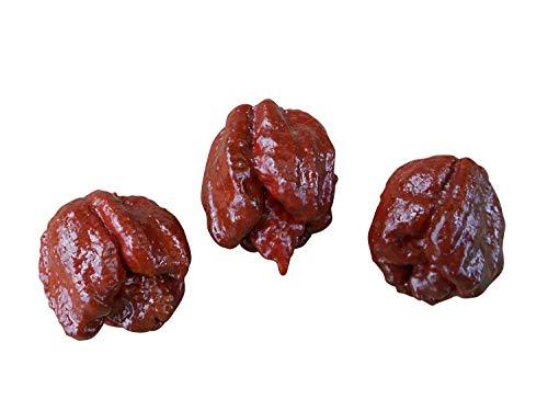 Trinidad Scorpion Moruga -brun/chocolate-Chilli 10 Graines ***Record du Monde***