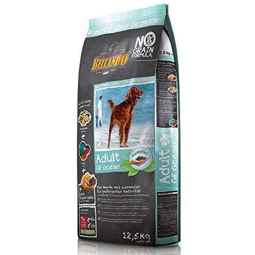 Belcando Adult GF Ocean [12,5 kg] getreidefreies Hundefutter | Sortenreines Trockenfutter ohne Getreide | Alleinfutter für ausgewachsene Hunde ab 1 Jahr
