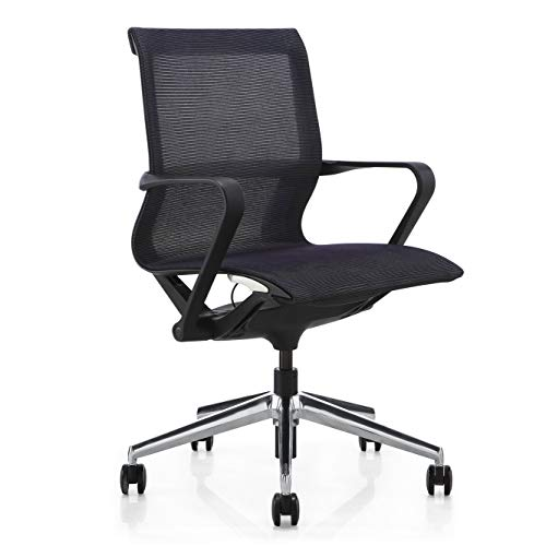 Hilo Series Ergonomic Office/Gaming Mesh Chair – Hydraulic Adjustable Height and Seat, Tilt Lock, Extensive Lumbar Support Breathable Mesh Desk Executive Office Conference Room Task Chair (Low Back)