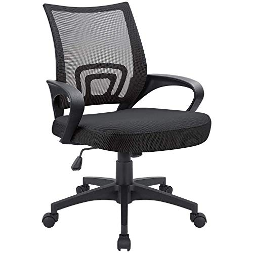 Devoko Office Chair Ergonomic Computer Desk Chair Mid Back Swivel Rolling Chair with Height Adjustable Lumbar Support Mesh Executive Chair with Armrests (Black)