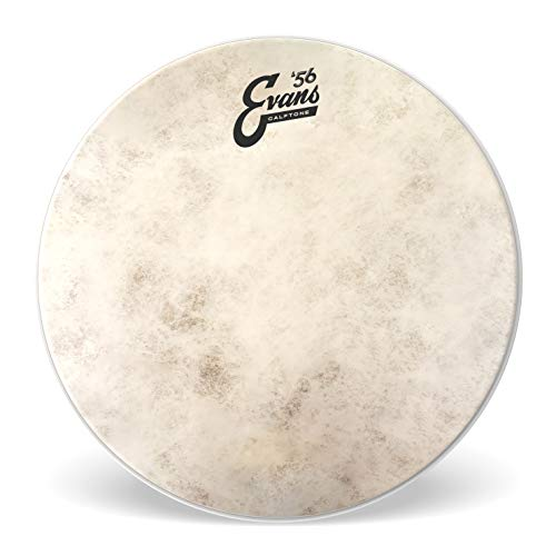 Evans TT16C7 Tom Fell Drumhead