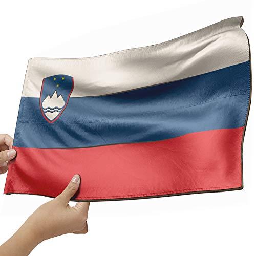 Slowenien Flagge als Lampe aus Holz - schenke deine individuelle Slowenien Fahne - kreativer Dekoartikel aus Echtholz