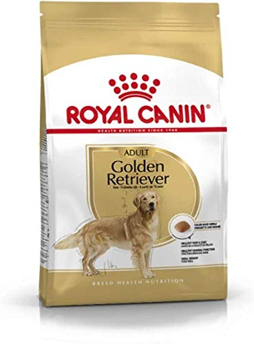 ROYAL CANIN Golden Retriever Secco Cane kg. 12 - Mangimi Secchi per Cani