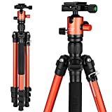 MACTREM Tripod DSLR SLR Tripod, 62.5' Light-Weight Aluminum Alloy Camera Tripod Phone Tripod with Phone Holder, 360 Degree Ball Head, Detachable Monopod, 33lbs Load with Carry Bag, Orange