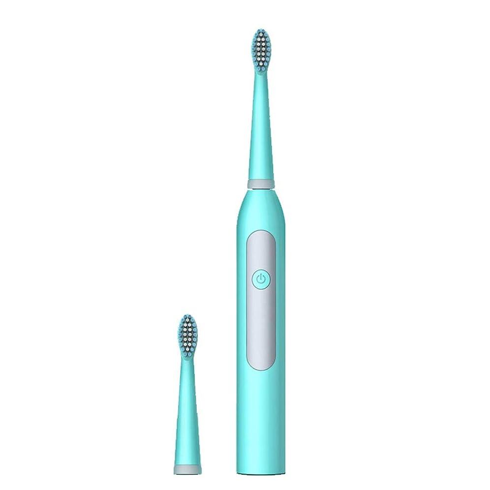書き込み怠合計電動歯ブラシ男性と女性の大人の家庭用非充電式ソフトヘア自動防水カップル音波,Blue
