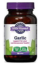 Garlic supplement to fight cold and flu virus