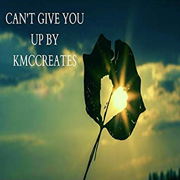 Can't Give You Up