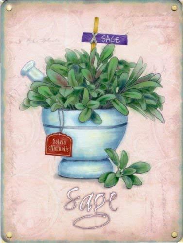 Sauge Herbes Jardin, Nourriture et Boisson Cuisine Cafe Shop, plantes, serre, jardin, abri de jardin ou d'Panneau mural en métal/acier, Acier, 9 x 6.5 cm (Magnet)