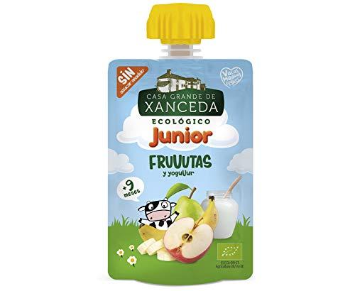 Casa Grande de Xanceda - Yogur ecológico de fruta ecológica Pack de 14 unidades (14 uds x90g)