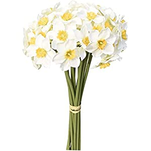 HOVEYY 12pcs White Artificial Daffodils Flowers,Artificial Narcissus Flower Bouquet,Faux Daffodils Plants Flower Arrangement for Party Home Decoration