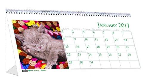 "House of Doolittle 2017 Monthly Desktop Tent Calendar, Kittens, 8.5"" x 4.5"" (HOD3669-17)"