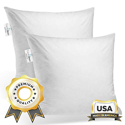 Purchase ComfyDown Set of Two, 95% Feather 5% Down, 24 X 24 Square Decorative Pillow Insert, Sham St...
