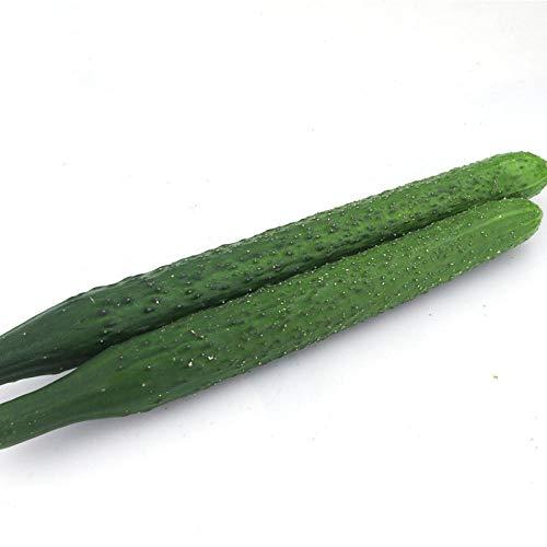 Qiusheng Gurkensamen Gemüsesamen 500G Farm Seeds