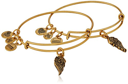 """Alex and Ani """"Path of Symbols"""" Wings Set of 2 Gold Expandable Wire Bangle Charm Bracelet"""