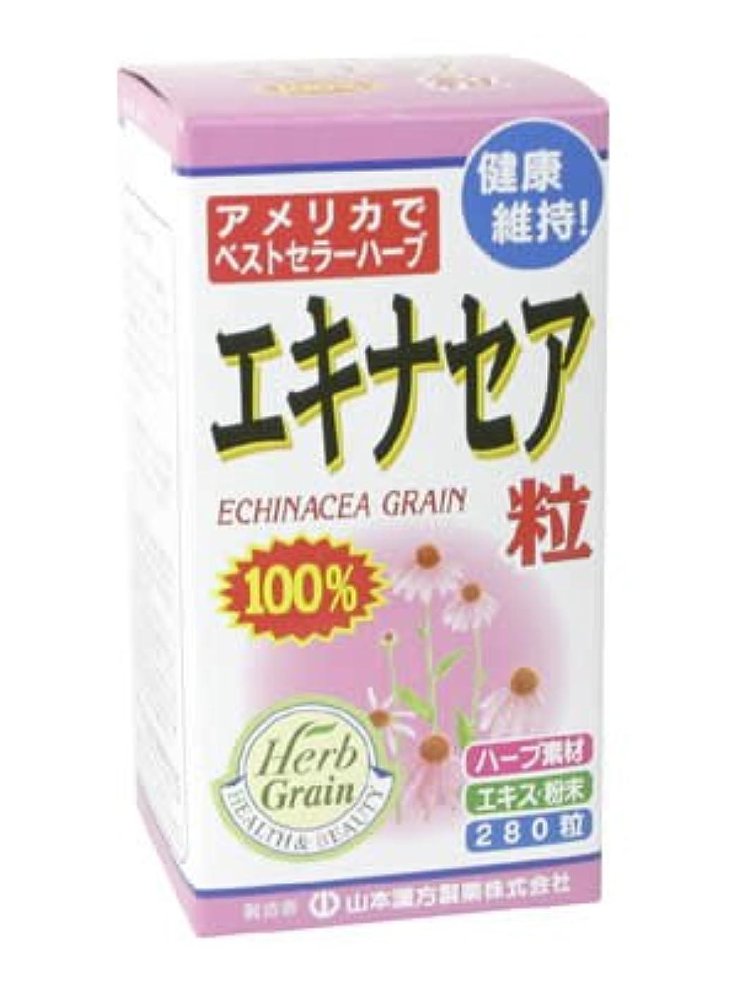 練習リー毎日エキナセア粒100% 280粒