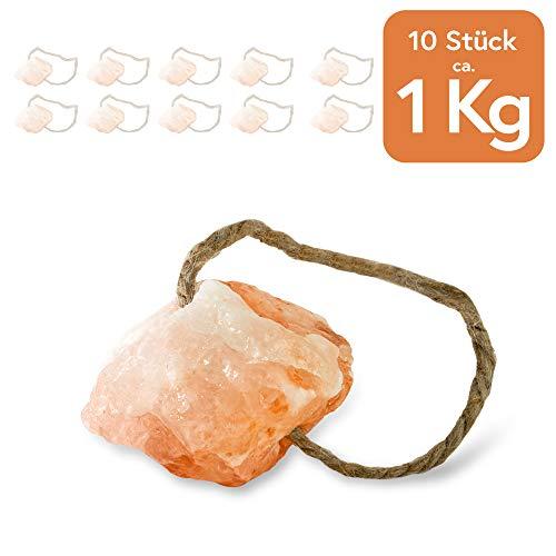 """Hochwertiger Salzleckstein """"Himalaya"""" 10er Set Leckstein mit Kordel, insgesamt ca. 1 kg, für Kaninchen, Katzen, Pferde, Schafe und andere Tiere - Mineralleckstein - Premium Leckstein"""