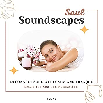 Soul Soundscapes, V06 - Reconnect Soul With Calm And Tranquil Music For Spa And Relaxation