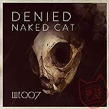 Naked Cat (Lenzmanns Rubbel die Katz Remix)