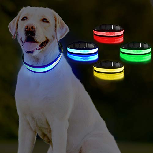 PICURA LED Dog Collar, Reflective Pet Safety Collar USB Rechargeable Adjustable with Steady Flashing/Strobe Light, Splashproof Pet Light up Collar for Small Medium Large Dogs (Small, Blue)