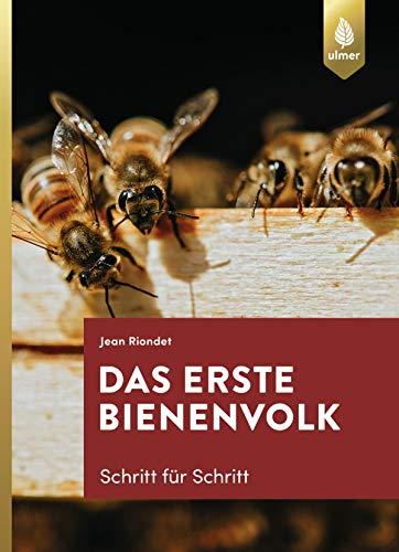 Das erste Bienenvolk - Schritt für Schritt
