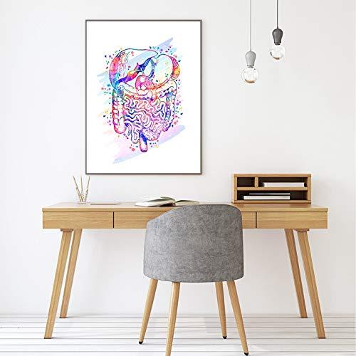mmzki Impresión de anatomía Órganos anatómicos Cartel Cerebro Corazón Pulmones Hígado Pelvis Caja torácica Anatomía Humana Pintura artística Clínica Decoración de Arte de Pared