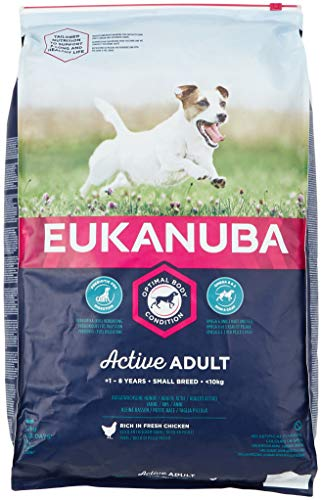 Eukanuba Dog – Active Adult – Small Breed - 12 kg