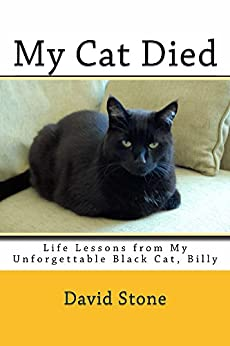 My Cat Died: Life Lessons from My Unforgettable Black Cat, Billy by [David Stone, Deborah Julian]