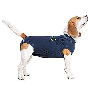 MPS Medical Pet Shirt pour Chiens, S+, Bleu