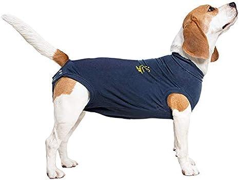 MPS Medical Pet Shirt, Perro, Azul, S+