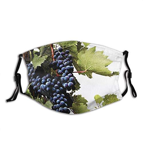 Weintrauben Sturmhaube Unisex Bandana Kopfbedeckung Gesichtsdekorationen FA-Ce Co-Ver FA-Ce Mas-Ke Mit Filtern