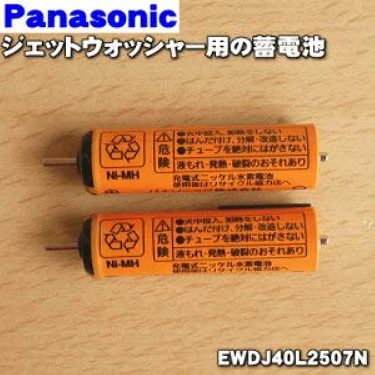 六分儀すすり泣きぜいたくパナソニック Panasonic 音波振動ハブラシ Doltz 蓄電池交換用蓄電池 EWDJ40L2507N