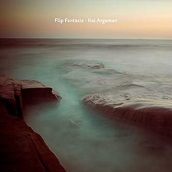 Flip Fantasia