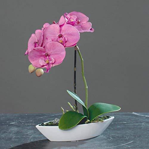 Artif-déco.com - Orchidée factice tissu gaufré pot Résine Blanc ovale H 28 cm Rose-crème - couleur: Rose-crème