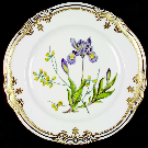 Spode Luncheon Plate Stafford Flowers