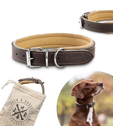Jack & Russell Collar de Perro de Cuero de Primera Calidad Plutón - Cuero Genuino con Grabado Original de J&R - Collar de Perro Pluto (M)