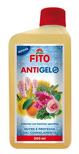 Fito X203301 Concime Antigelo, Giallo, 7.5x5x18 cm