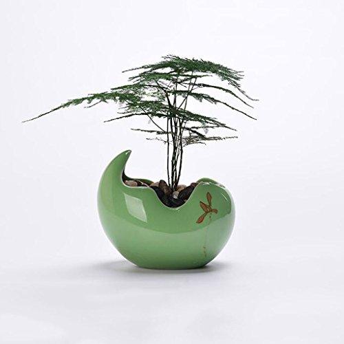 JKL-Blumenständer Minimalistische Blumentöpfe und Grüns Narzissen Kupfer Töpfe Narzissen Töpfe Keramik Wasser Kulturbehälter (Farbe : Grün)