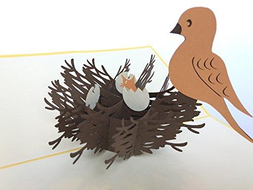 Kleine baby vogel in het nest pop-up kaart tijd naar huis Verjaardagskaart verjaardag wensen verjaardagskaart naamdag kaart groeten kaart Gelukkige verjaardag 3D pop-up wenskaart, Kirigami Paper Craft PostCards, Dank u pop-up wenskaart, PostCards, viering, felicitatie...