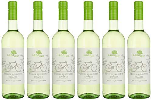 Landlust Weißer Burgunder & Rivaner BIO Weißwein Trocken (6 x 0.75l)
