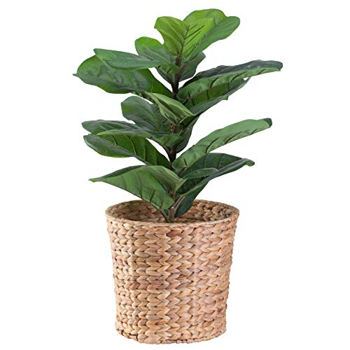 Natural Water Hyacinth Round Waste Basket - for Bathrooms Bedrooms or Offices