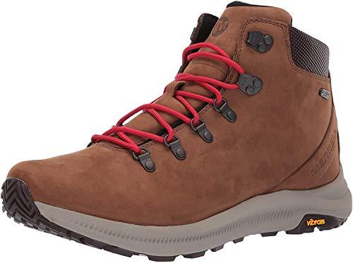 Merrell mens Ontario Mid Waterproof Hiking Shoe, Dark Earth, 10 US