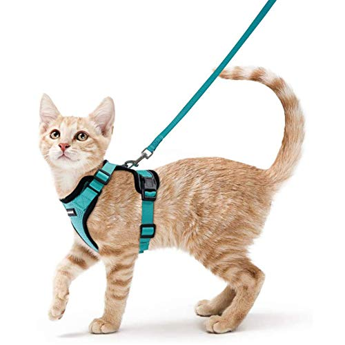 """rabbitgoo Cat Harness and Leash for Walking, Escape Proof Soft Adjustable Vest Harnesses for Cats, Easy Control Breathable Reflective Strips Jacket, Emerald, XS (Chest: 13.5""""-16"""")"""
