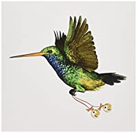 BoehmグラフィックスHummingbird–Hummingbirdクリスマス–グリーティングカード Individual Greeting Card