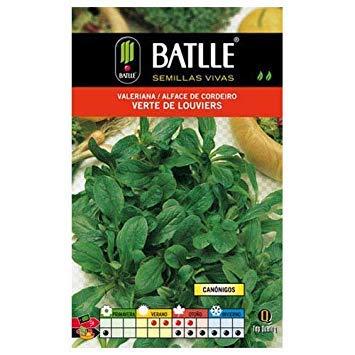 Potseed Batlle aromatiques Graines - Valériane Vert Mache de Louviers (6G)