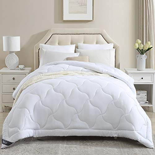 Eterish Comforters for Queen Bed, Quilted Down Alternative Comforter Queen All Season, Lightweight White Comforter Queen Duvet Insert with Corner Tabs, Microfiber Fill, Box Stitched