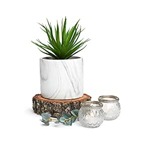 """Silk Flower Arrangements Artificial Succulent in Pot - Planter Pot with Faux Succulent Plant - 8"""" high - Artificial House Plant to Style Any Home, or Great as a Decorative Succulent Fake Plant for Office Decor or Shelf Decor"""